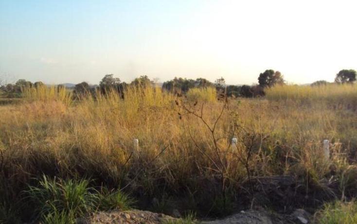 Foto de terreno habitacional en venta en  , tlayacapan, tlayacapan, morelos, 1745485 No. 03