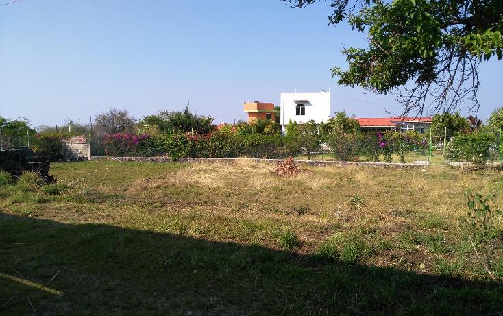 Foto de terreno habitacional en venta en  , tlayacapan, tlayacapan, morelos, 1898620 No. 02