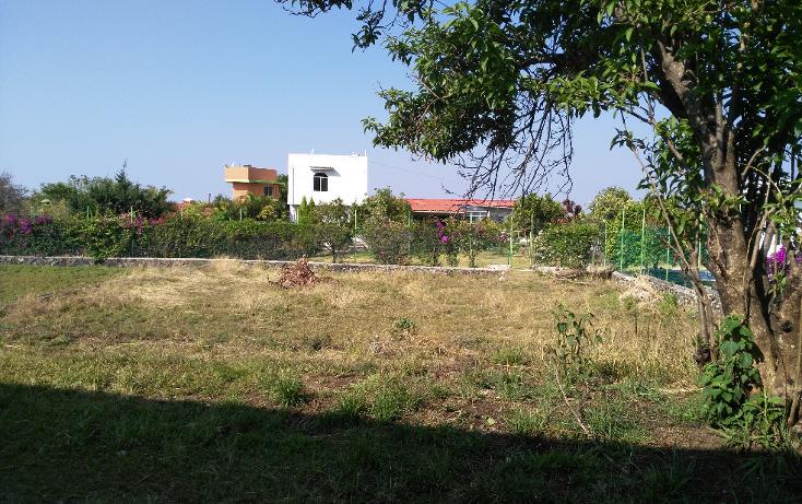 Foto de terreno habitacional en venta en  , tlayacapan, tlayacapan, morelos, 1898620 No. 03
