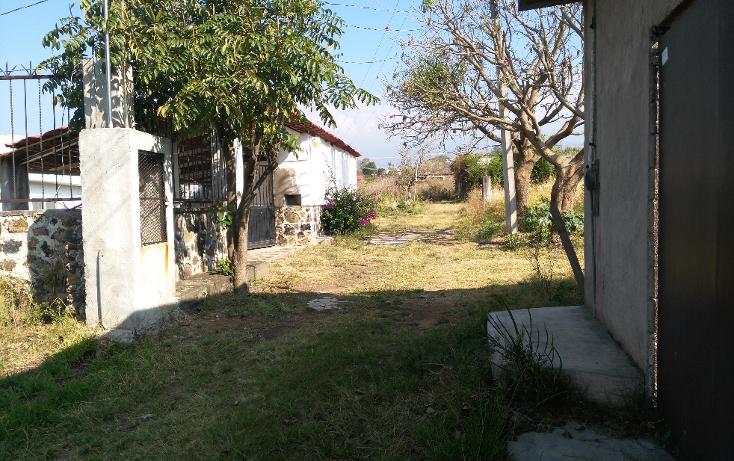 Foto de terreno habitacional en venta en  , tlayacapan, tlayacapan, morelos, 1898620 No. 04