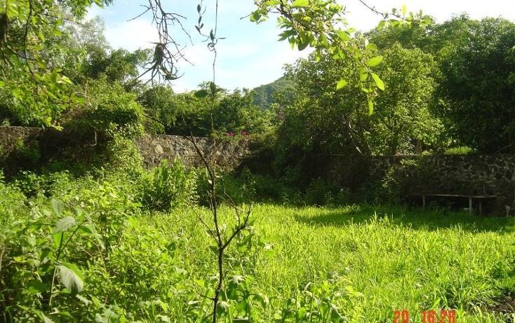 Foto de rancho en venta en  , tlayacapan, tlayacapan, morelos, 399691 No. 02