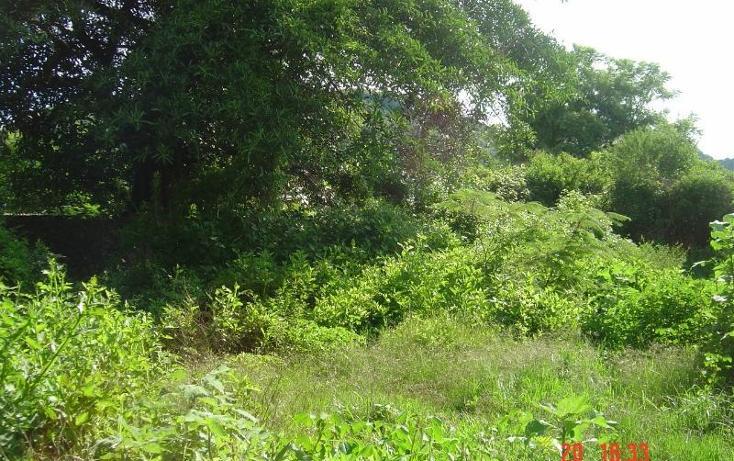 Foto de rancho en venta en  , tlayacapan, tlayacapan, morelos, 399691 No. 03
