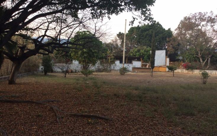 Foto de terreno comercial en venta en  , tlayacapan, tlayacapan, morelos, 945789 No. 02