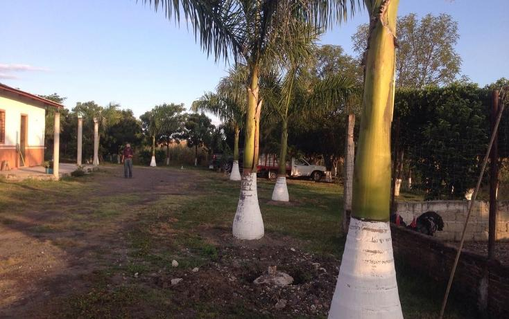 Foto de terreno habitacional en venta en, tlayca, jonacatepec, morelos, 2012000 no 01