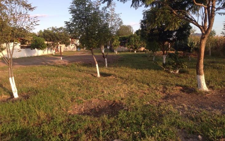 Foto de rancho en venta en  , tlayca, jonacatepec, morelos, 2012000 No. 02