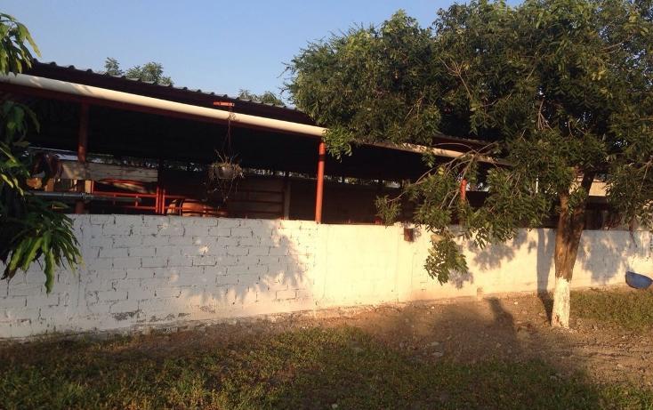 Foto de terreno habitacional en venta en, tlayca, jonacatepec, morelos, 2012000 no 03