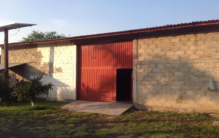 Foto de rancho en venta en  , tlayca, jonacatepec, morelos, 2012000 No. 04