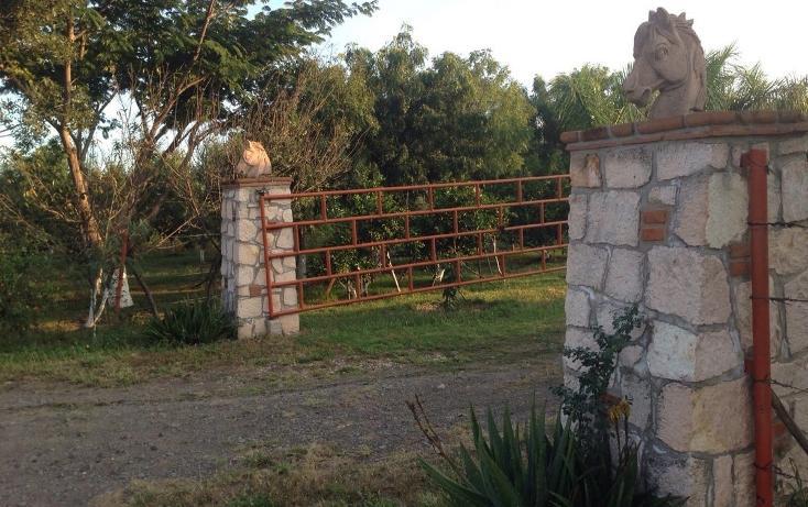 Foto de rancho en venta en  , tlayca, jonacatepec, morelos, 2012000 No. 06