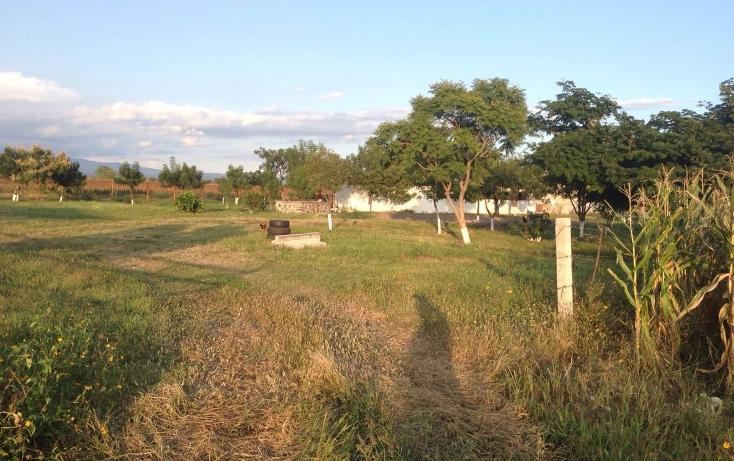 Foto de rancho en venta en  , tlayca, jonacatepec, morelos, 2012000 No. 07