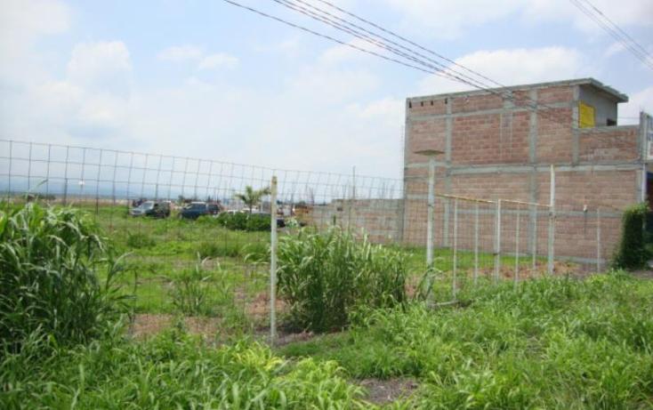 Foto de terreno comercial en venta en  , tlayecac, ayala, morelos, 1779044 No. 02