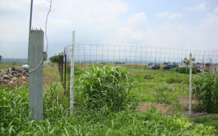 Foto de terreno comercial en venta en, tlayecac, ayala, morelos, 1779044 no 03