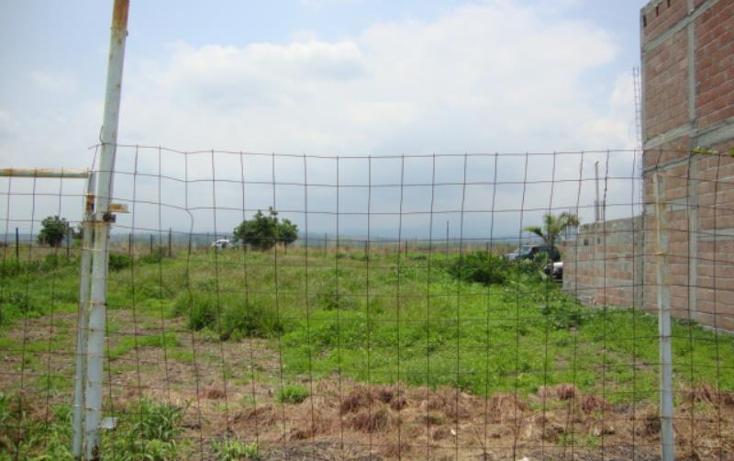 Foto de terreno comercial en venta en  , tlayecac, ayala, morelos, 1779044 No. 04