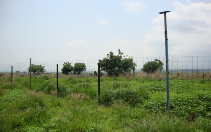 Foto de terreno comercial en venta en  , tlayecac, ayala, morelos, 1779044 No. 06