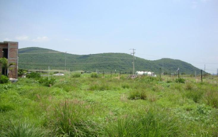 Foto de terreno comercial en venta en  , tlayecac, ayala, morelos, 1779044 No. 08