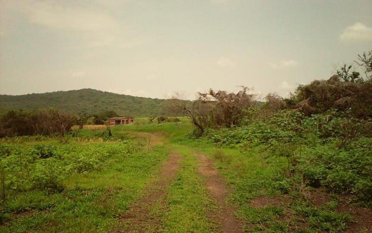 Foto de terreno comercial en venta en  , tlayecac, ayala, morelos, 1783468 No. 02