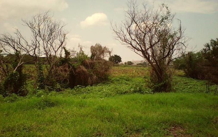 Foto de terreno comercial en venta en  , tlayecac, ayala, morelos, 1783468 No. 03