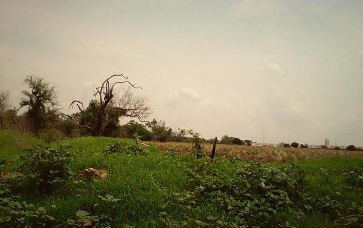 Foto de terreno comercial en venta en  , tlayecac, ayala, morelos, 1783468 No. 04