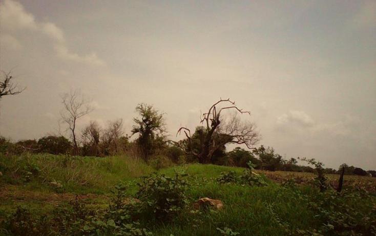 Foto de terreno comercial en venta en  , tlayecac, ayala, morelos, 1783468 No. 05