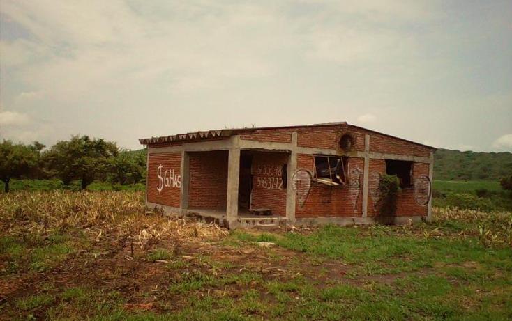 Foto de terreno comercial en venta en  , tlayecac, ayala, morelos, 1783468 No. 06