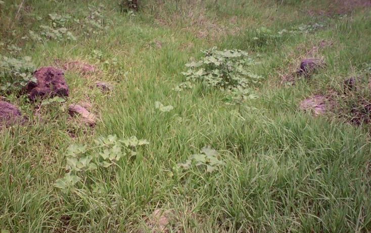 Foto de terreno comercial en venta en  , tlayecac, ayala, morelos, 1783468 No. 07