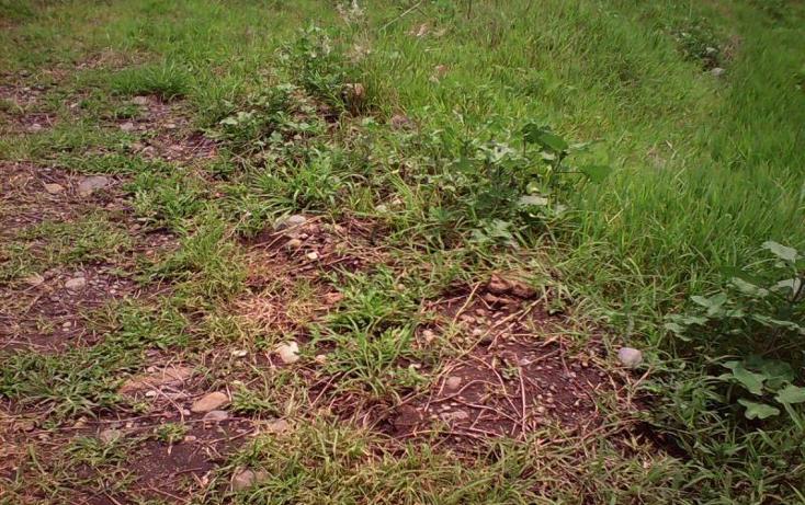 Foto de terreno comercial en venta en  , tlayecac, ayala, morelos, 1783468 No. 08