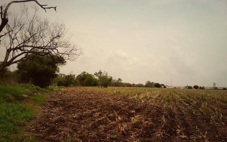 Foto de terreno comercial en venta en  , tlayecac, ayala, morelos, 1783468 No. 09