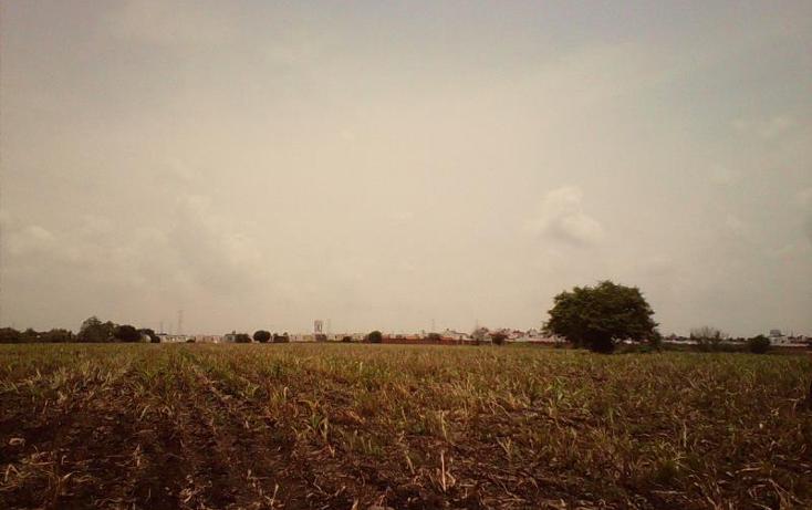 Foto de terreno comercial en venta en  , tlayecac, ayala, morelos, 1783468 No. 10