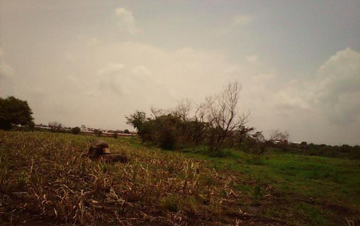 Foto de terreno comercial en venta en  , tlayecac, ayala, morelos, 1783468 No. 11
