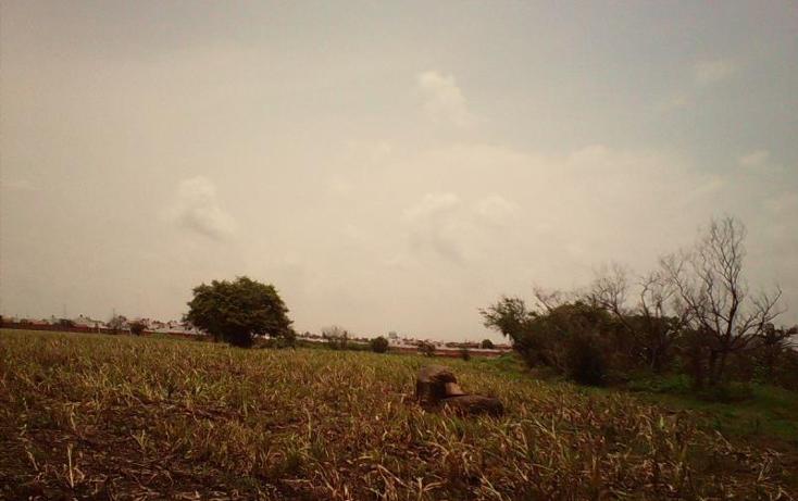 Foto de terreno comercial en venta en  , tlayecac, ayala, morelos, 1783468 No. 12