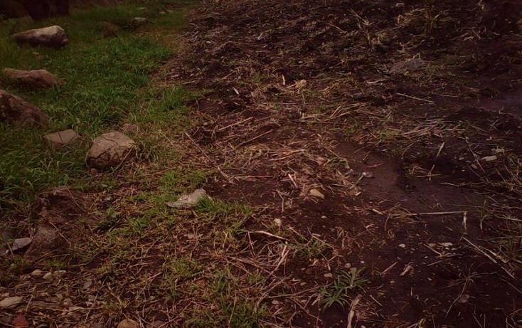 Foto de terreno comercial en venta en  , tlayecac, ayala, morelos, 1783468 No. 14