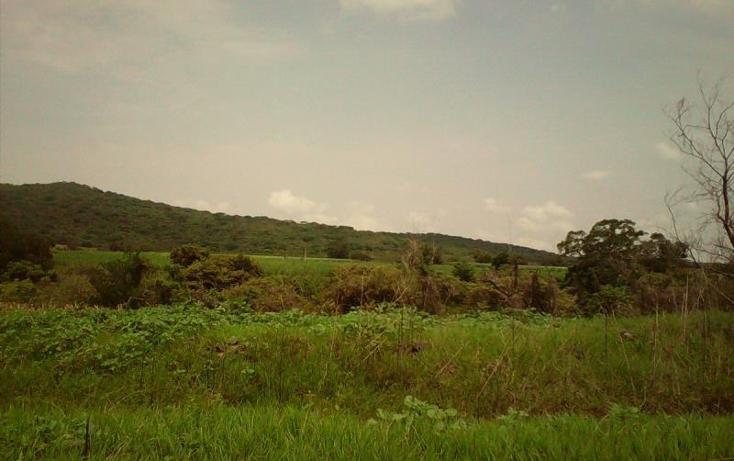 Foto de terreno comercial en venta en  , tlayecac, ayala, morelos, 1783468 No. 15
