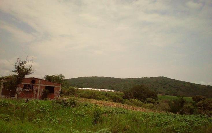 Foto de terreno comercial en venta en  , tlayecac, ayala, morelos, 1783468 No. 16