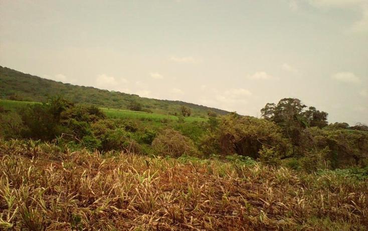 Foto de terreno comercial en venta en  , tlayecac, ayala, morelos, 1783468 No. 18