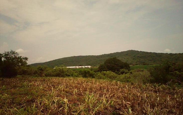 Foto de terreno comercial en venta en  , tlayecac, ayala, morelos, 1783468 No. 19