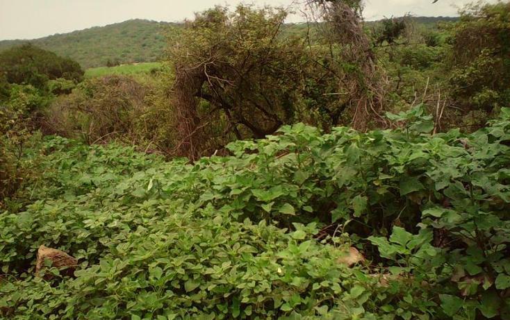 Foto de terreno comercial en venta en  , tlayecac, ayala, morelos, 1783468 No. 21