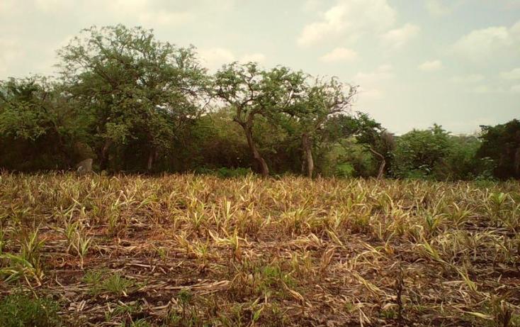 Foto de terreno comercial en venta en  , tlayecac, ayala, morelos, 1783468 No. 22