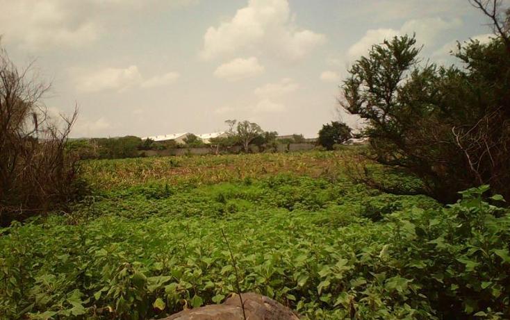 Foto de terreno comercial en venta en  , tlayecac, ayala, morelos, 1783468 No. 23