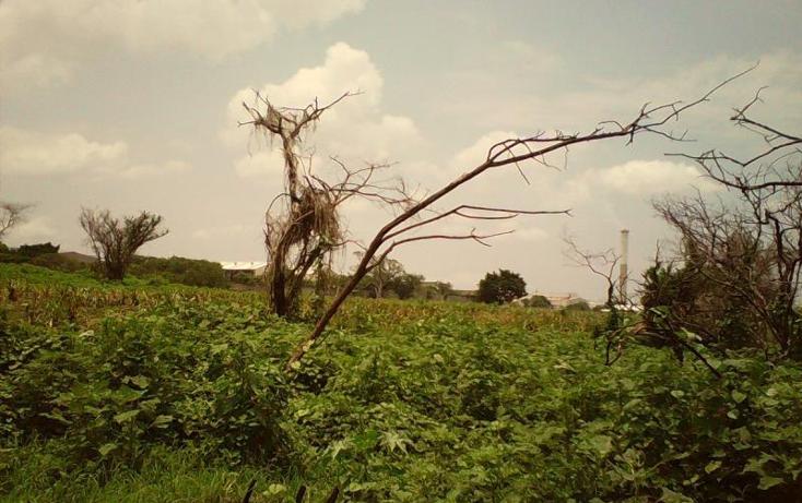 Foto de terreno comercial en venta en  , tlayecac, ayala, morelos, 1783468 No. 25