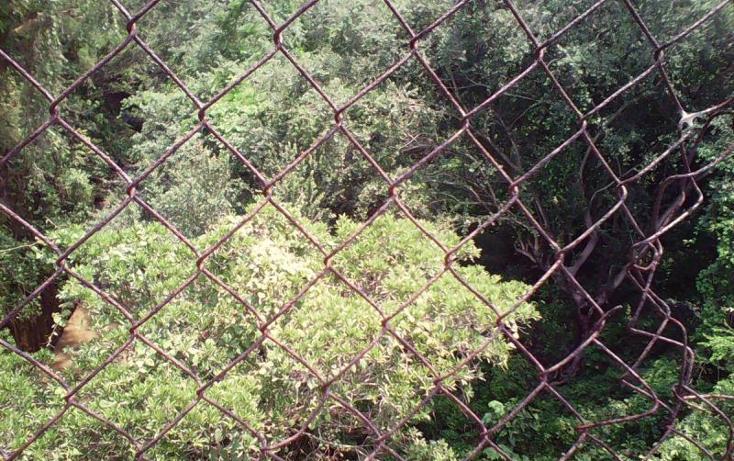 Foto de terreno comercial en venta en  , tlayecac, ayala, morelos, 1783468 No. 38