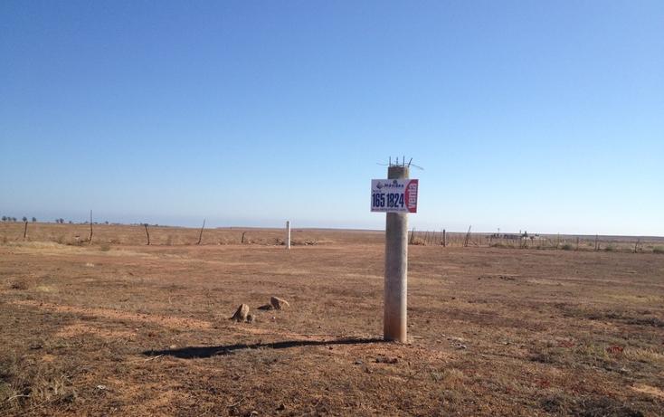 Foto de terreno comercial en venta en  , todos los santos, ensenada, baja california, 934969 No. 03