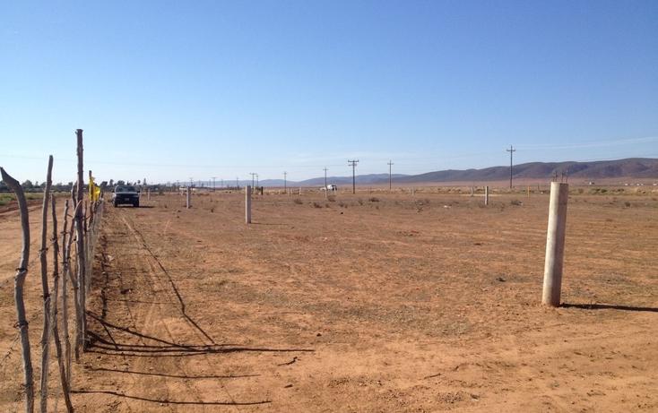 Foto de terreno comercial en venta en  , todos los santos, ensenada, baja california, 934969 No. 06