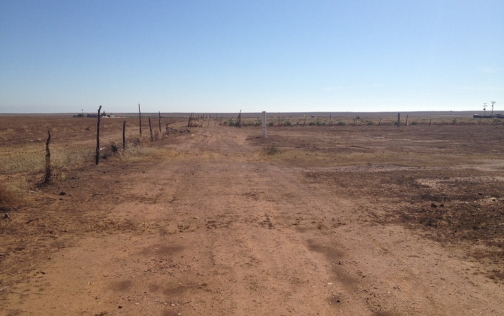 Foto de terreno comercial en venta en  , todos los santos, ensenada, baja california, 934969 No. 15