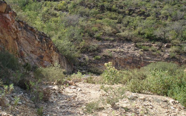 Foto de terreno comercial en venta en  , tolimán, tolimán, querétaro, 1058067 No. 13