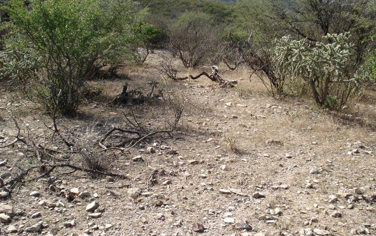 Foto de terreno comercial en venta en  , tolimán, tolimán, querétaro, 1058067 No. 23