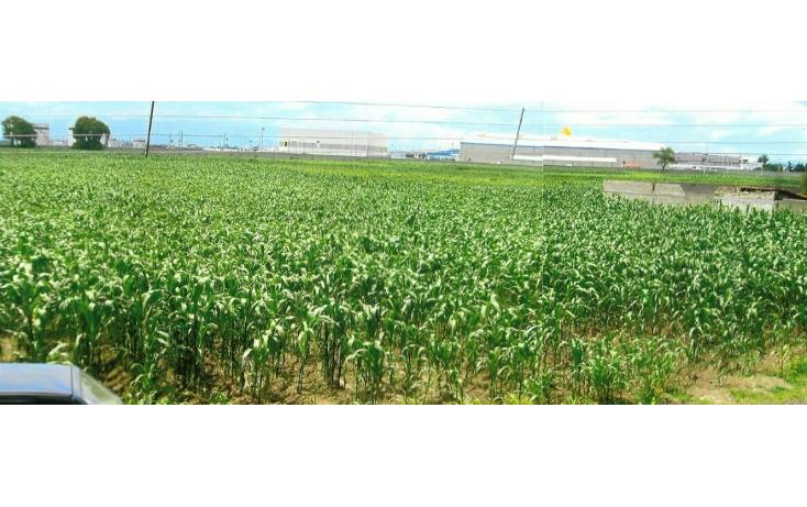 Foto de terreno comercial en venta en  , toluca (lic. adolfo l?pez mateos), toluca, m?xico, 1108013 No. 06