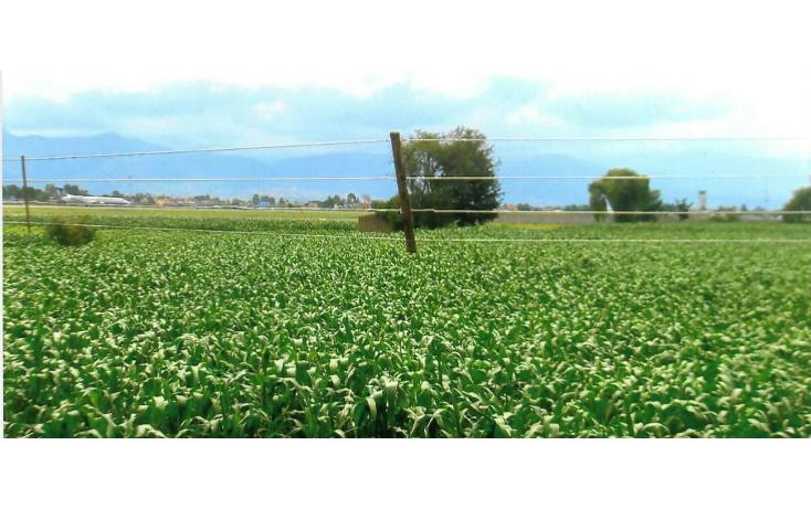 Foto de terreno comercial en venta en  , toluca (lic. adolfo l?pez mateos), toluca, m?xico, 1108013 No. 07