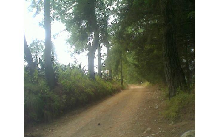Foto de rancho en venta en tolucamorelia, unión de los berros, villa victoria, estado de méxico, 597957 no 02