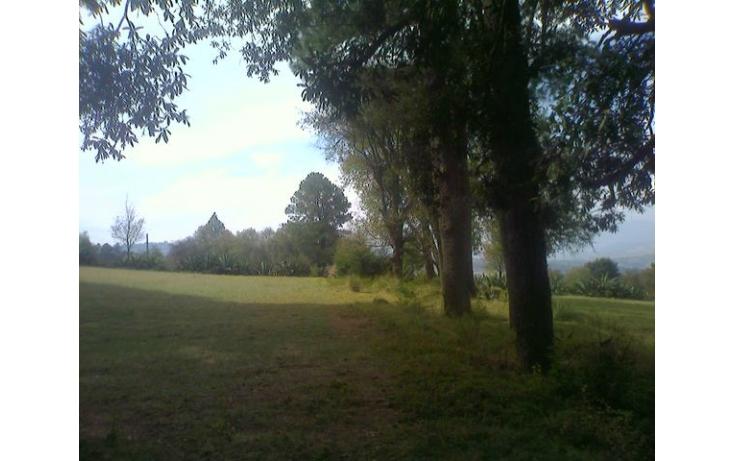 Foto de rancho en venta en tolucamorelia, unión de los berros, villa victoria, estado de méxico, 597957 no 03