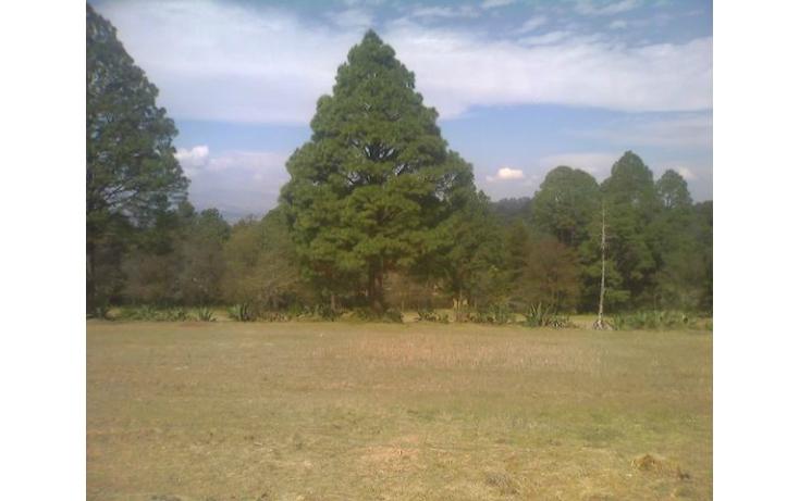 Foto de rancho en venta en tolucamorelia, unión de los berros, villa victoria, estado de méxico, 597957 no 06