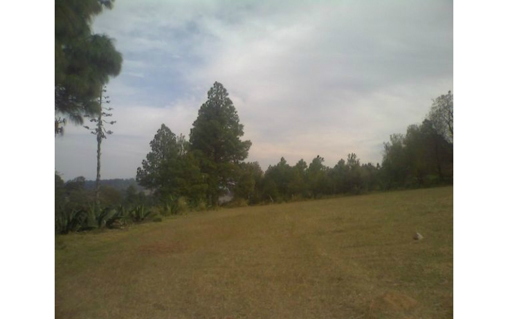 Foto de rancho en venta en tolucamorelia, unión de los berros, villa victoria, estado de méxico, 597957 no 18